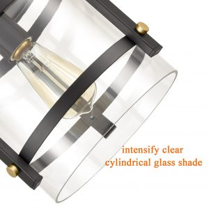 Industrial Black Flush Mount Ceiling Light with Clear Glass Shade